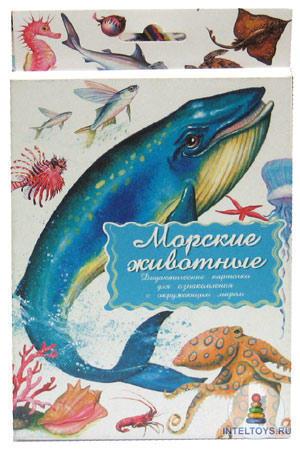 Дидактические карточки «Морские животные», Маленький гений-Пресс