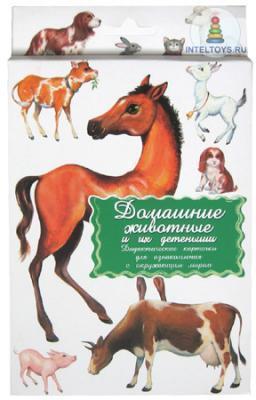 Дидактические карточки «Домашние животные и их детеныши»