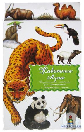 Дидактические карточки «Животные Азии»