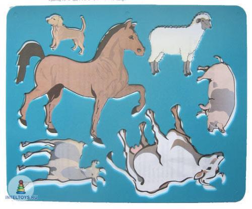 Трафарет «Домашние животные»