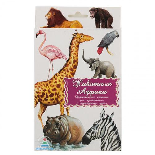 Дидактические карточки «Животные Африки»