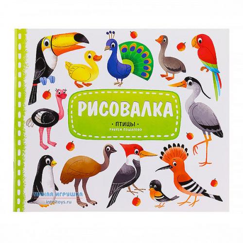 Рисовалка «Птицы» с наклейками, ГеоДом