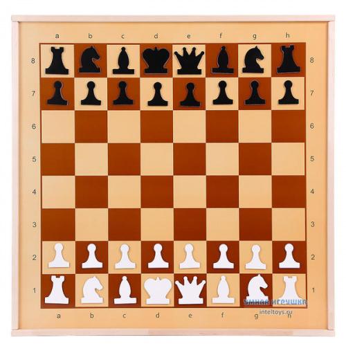 Магнитные демонстрационные шахматы, Десятое королевство