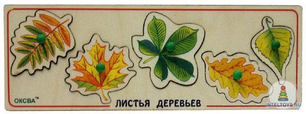 Листья деревьев (доска Сегена)
